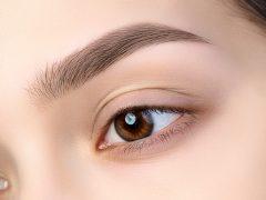 eyebrow dandruff