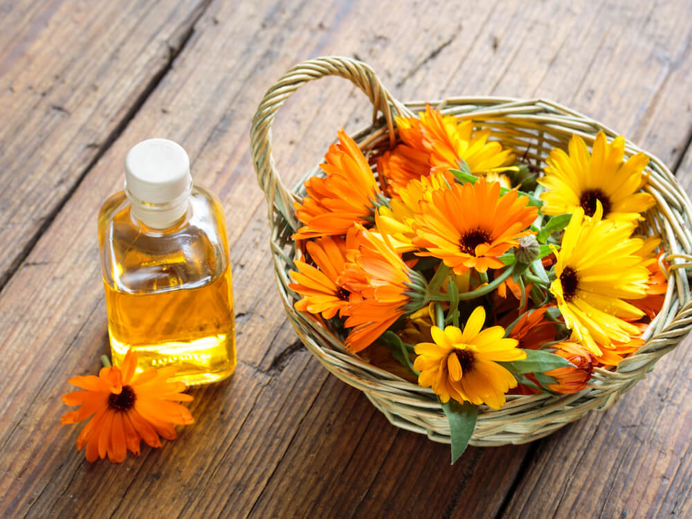Toner dengan Kandungan Bunga Calendula