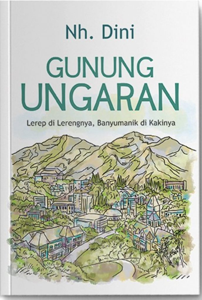 Novel Karya Nh. Dini