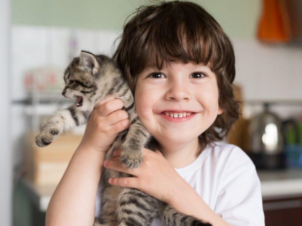 manfaat memiliki hewan peliharaan bagi si kecil