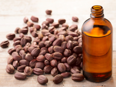 Rekomendasi jojoba oil lokal