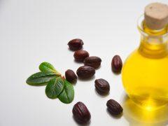 jojoba oil untuk jerawat