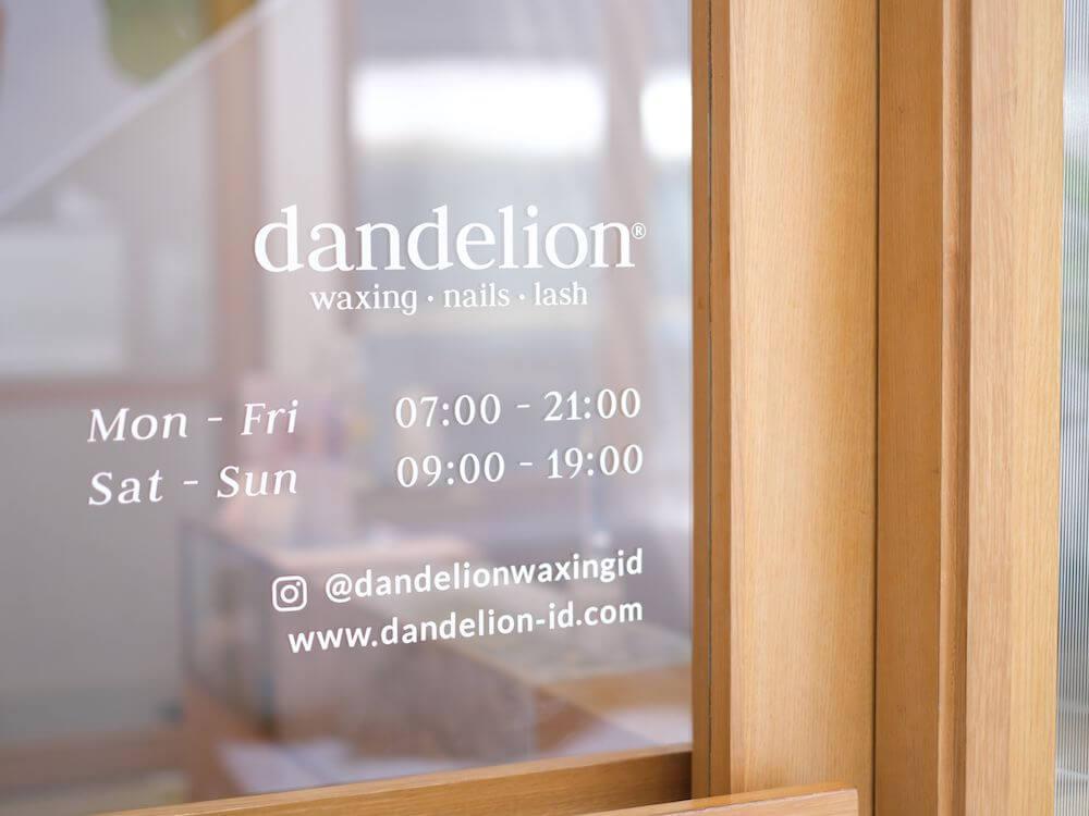Review Dandelion