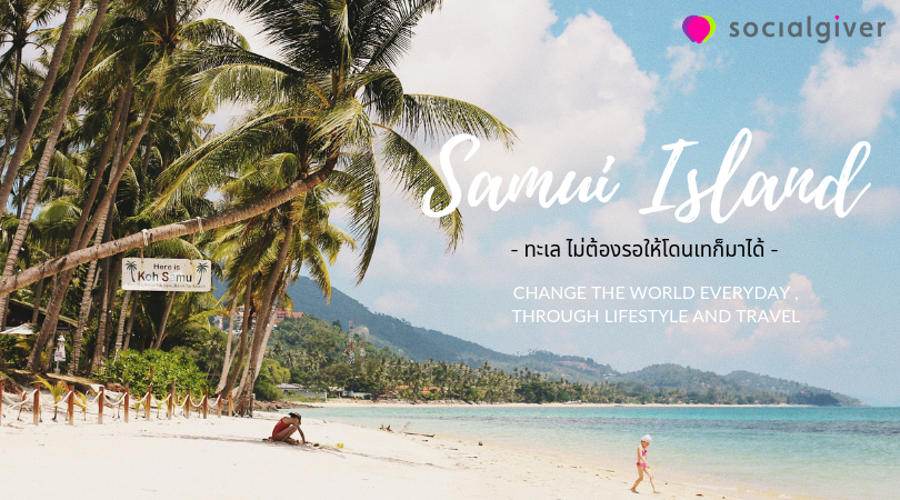 Lost In Samui (1)