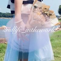 2ndlife_intheworld