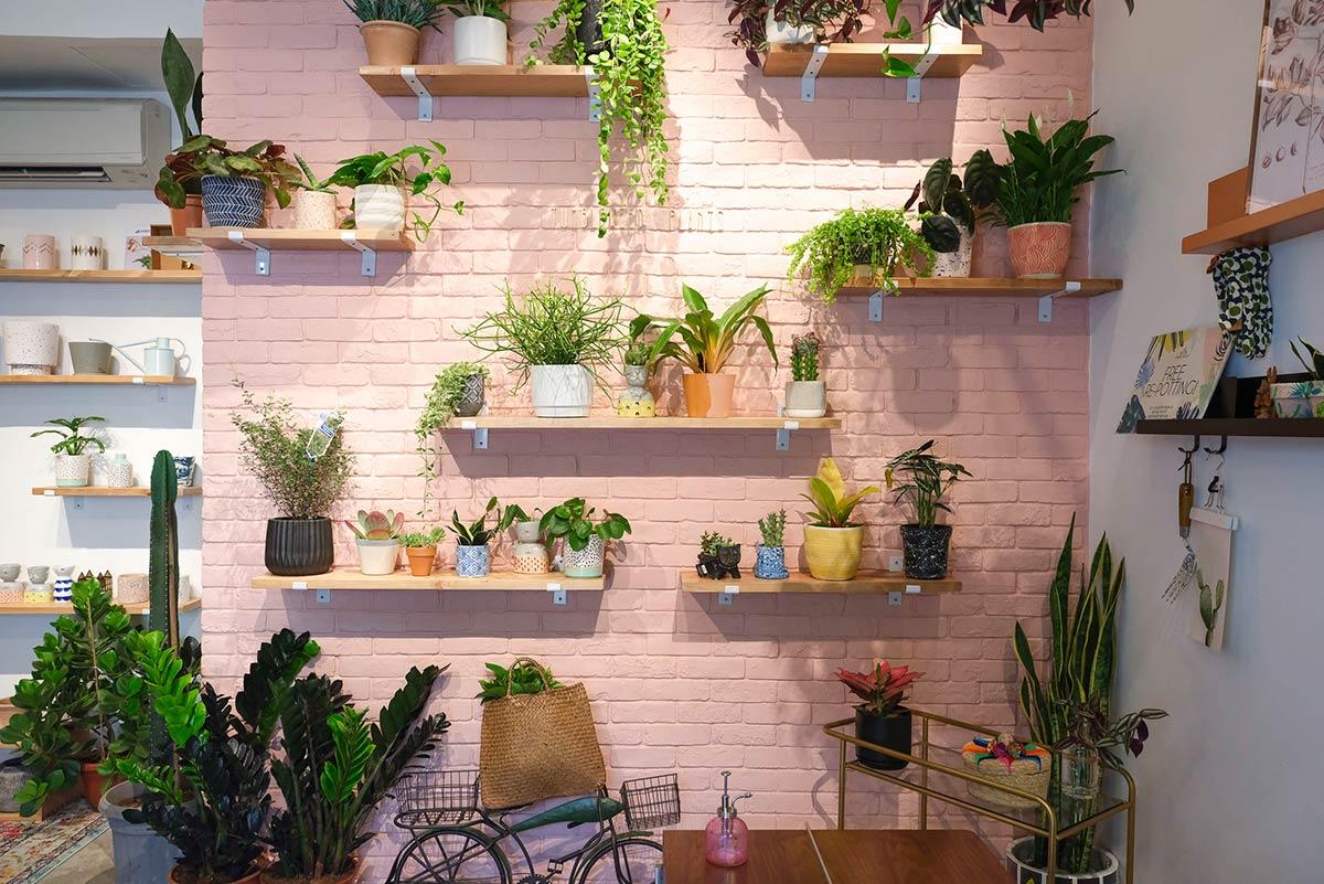 Tumbleweed Store Photo