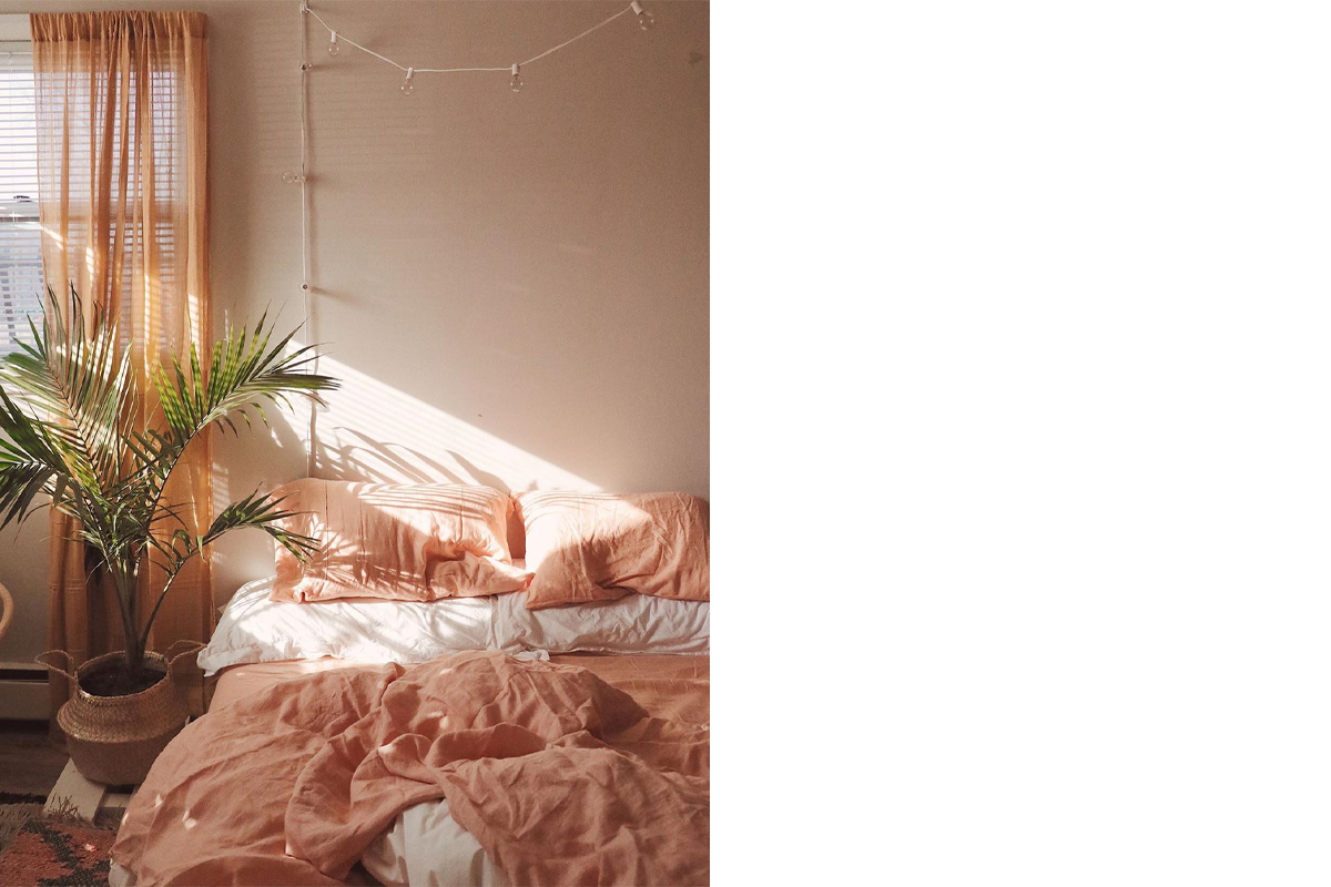 squarerooms-celeste.escarcega-bedroom-decor-pink-bed-sheets-plant-goals-aesthetic-pretty-cute