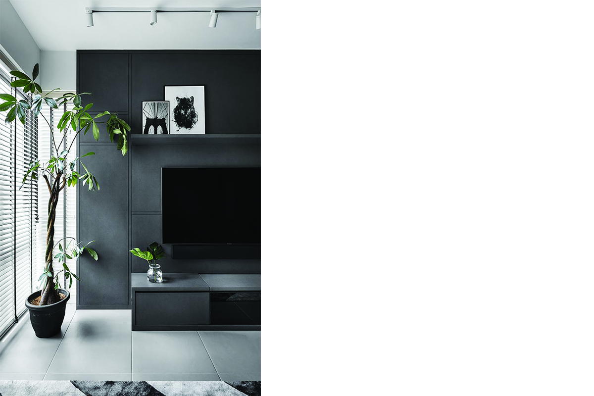 squarerooms-plants-purify-air-living-room-black-dark-stone