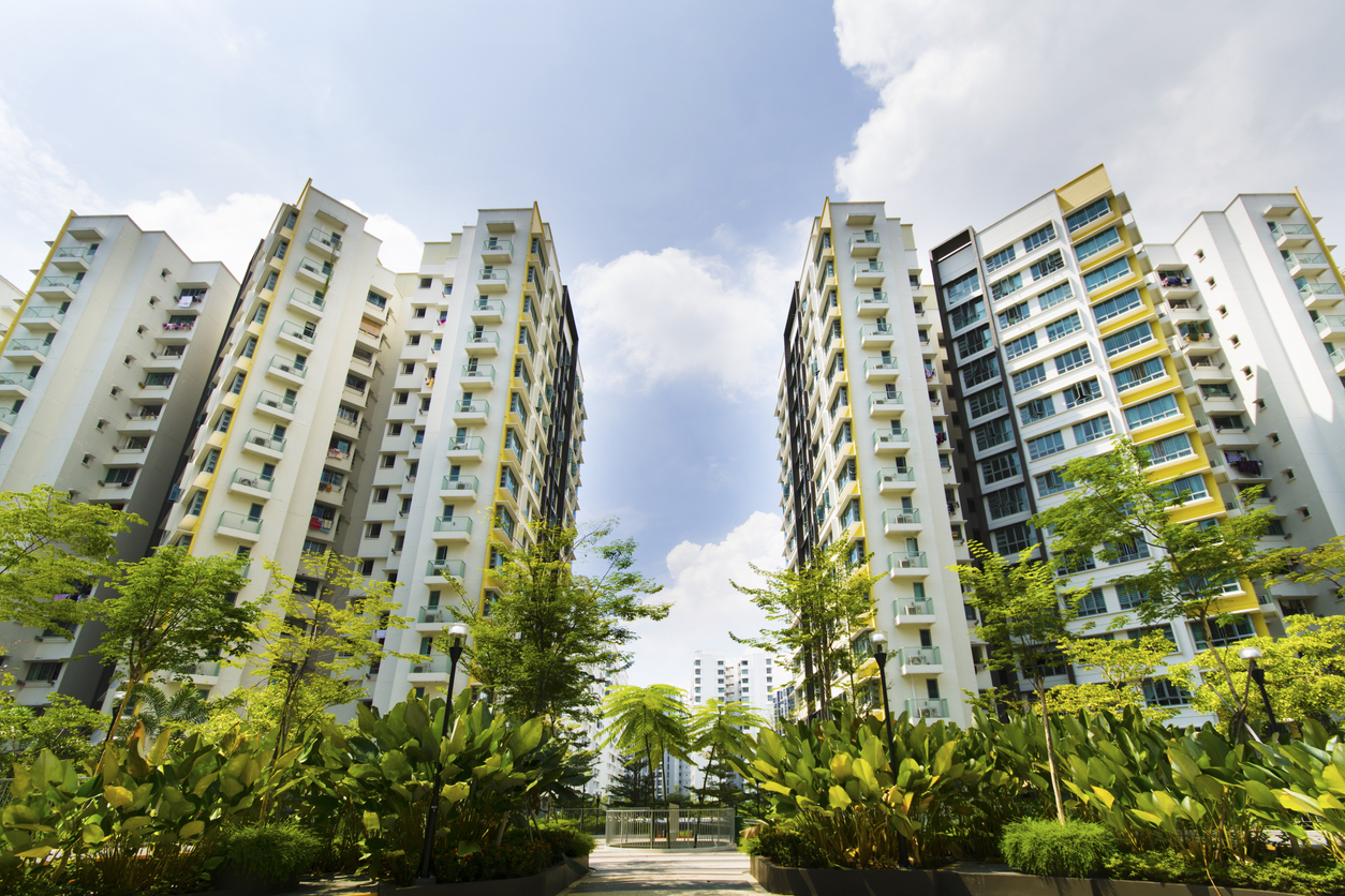 squarerooms-hdb-flats-singapore-low-angle-view-plants-buildings-housing