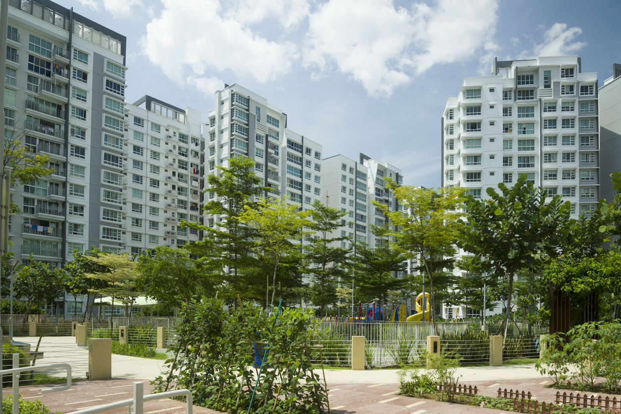 squarerooms-hdb-flats-singapore-plants-buildings-housing