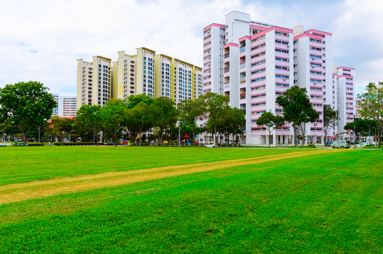 squarerooms-hdb-flats-singapore-plants-buildings-housing-park-colourful-bright-nature