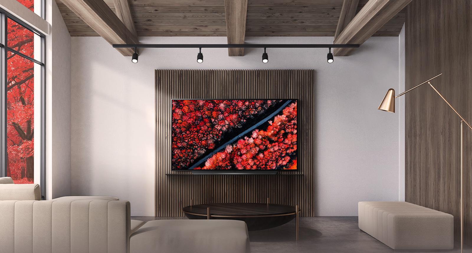 OLED65C9PTA_OLED_TVS_Design_D