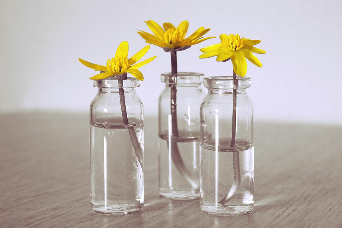 squarerooms glass jar home decor flower vase