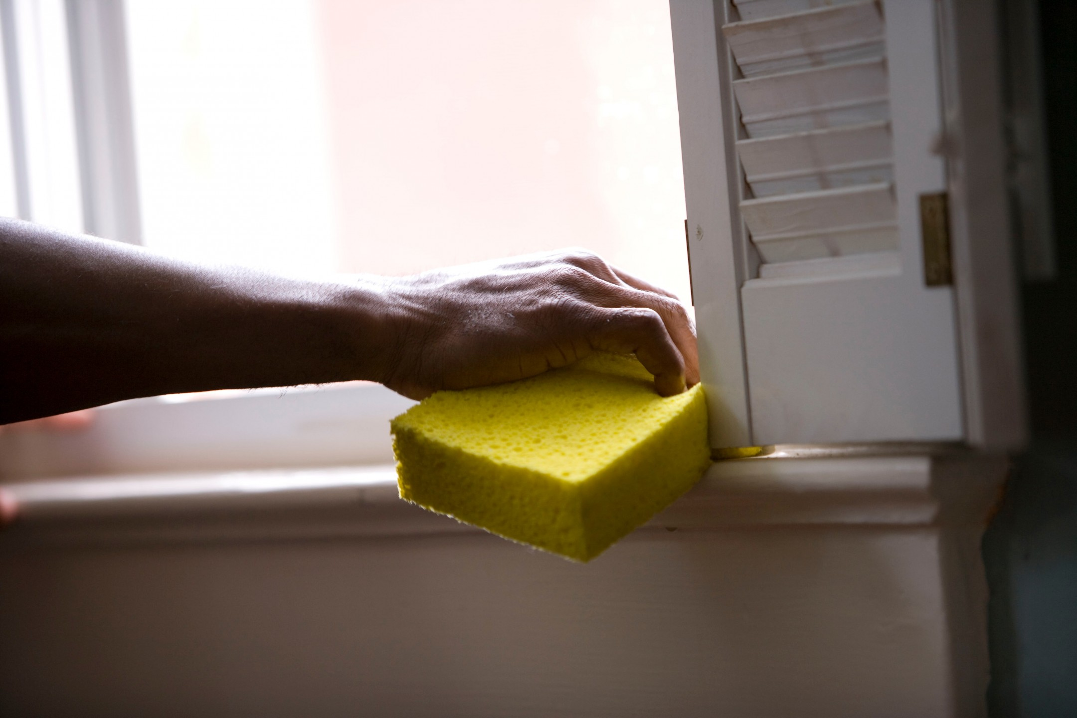 squarerooms cdc sponge arm hand cleaning window