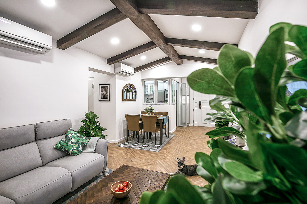 squarerooms fifth avenue interior design resale hdb flat renovation Living and dining rustic wood beams plants green couch dog