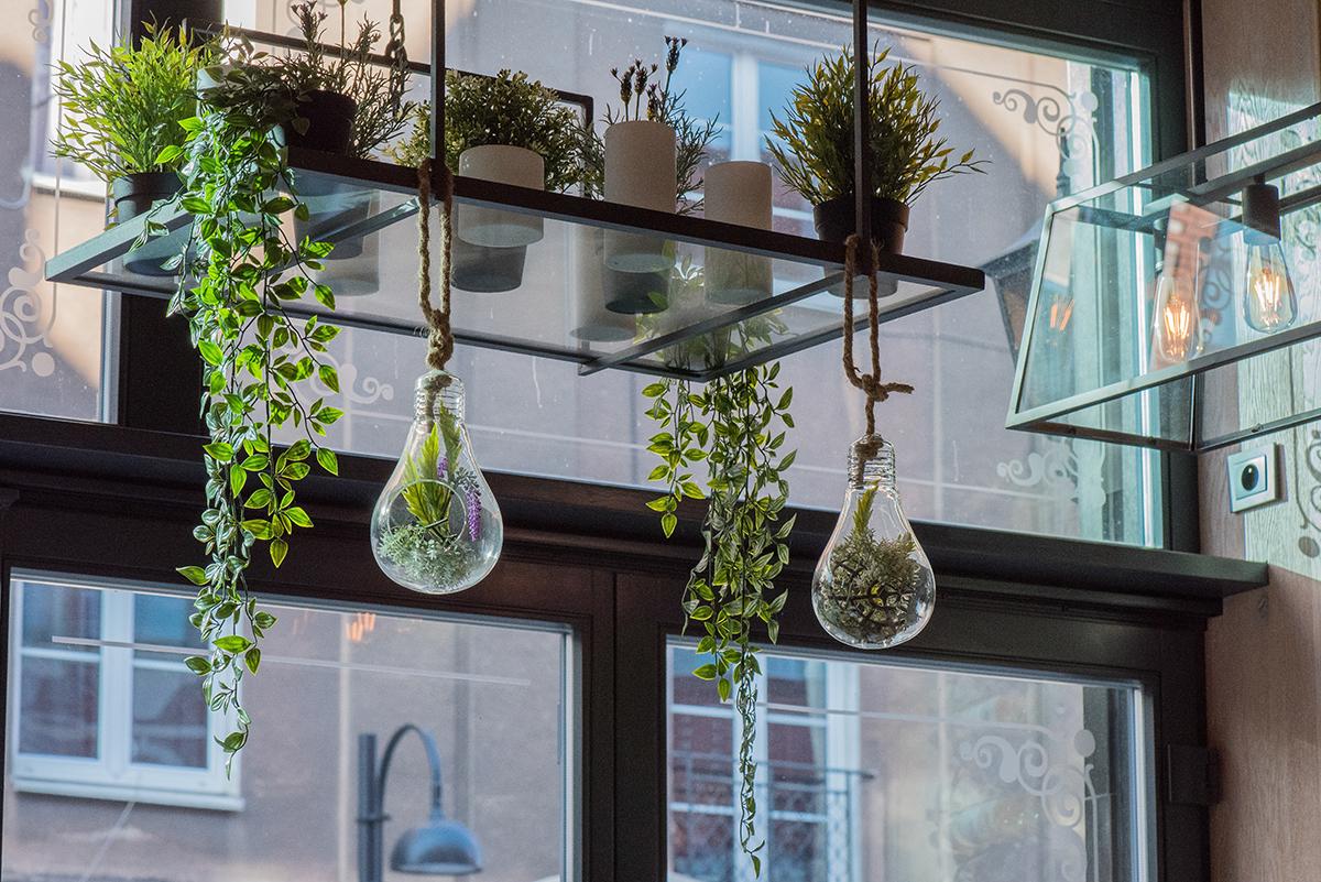 squarerooms Eduardo Casajus unsplash plants indoor garden hanging ceiling rack green