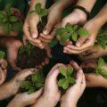 bagaimana cara mengajarkan anak cinta lingkungan