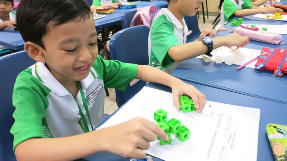 apa itu singaporean primary school curriculum