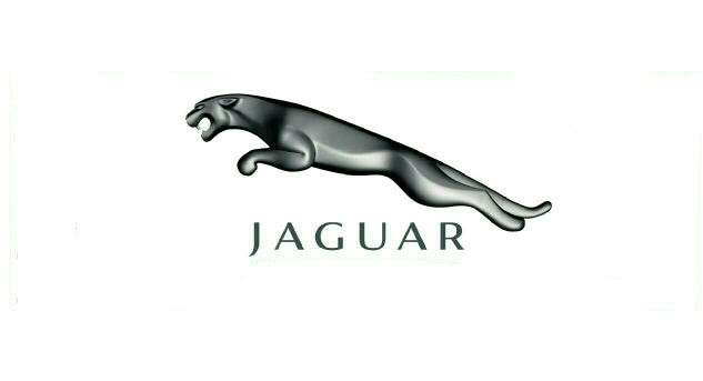 JAGUAR PROPERTIES
