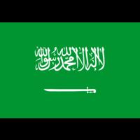 SAUDI ARABIA PACKAGE TRACKING | Parcel Monitor