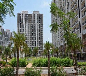 3 BHK  Apartment For Rent in DLF New Town Heights II