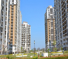 4 BHK  Apartment For Rent in DLF New Town Heights