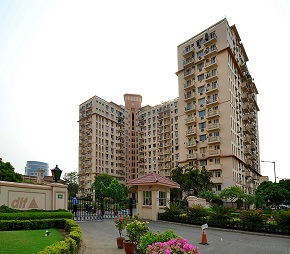 4 BHK  Apartment For Rent in DLF Oakwood Estate