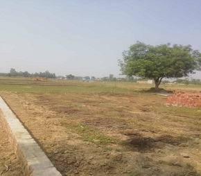 other-Picture-ojas-enclave-2083783