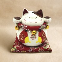 Fortune Cat (Male)