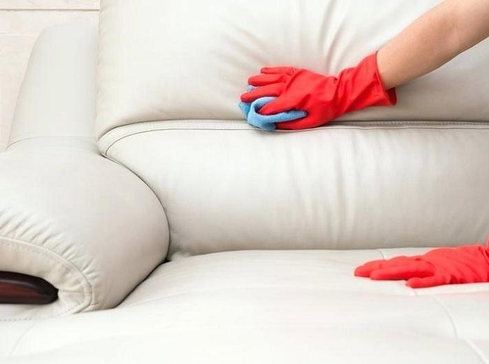 Sofa da bị nấm mốc nên xử lí như thế nào? HERAMO.com