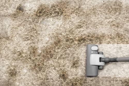 heramo.com- vệ sinh thảm trải sàn- hình 7