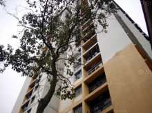 Blk 27 Dover Crescent (Queenstown), HDB 5 Rooms #365202