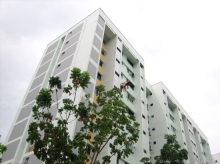 Tampines Street 24 photo thumbnail #13