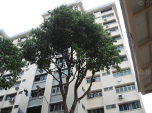 Ang Mo Kio Avenue 5 photo thumbnail #16