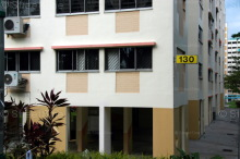 Blk 130 Cashew Road (Bukit Panjang), HDB Executive #224562