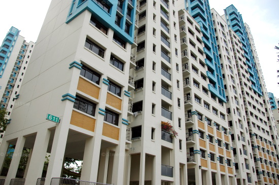 Blk 611 Bukit Panjang Ring Road (Bukit Panjang), HDB 5 Rooms #221092