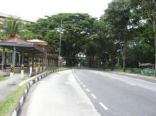 Ang Mo Kio Avenue 1 thumbnail photo