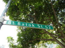 Bukit Batok Street 52 photo thumbnail #6