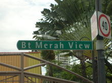 Bukit Merah View thumbnail photo