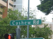 Cashew Road photo thumbnail #6