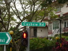 Cashew Road photo thumbnail #9