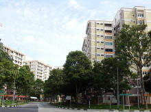 Choa Chu Kang Street 52 photo thumbnail #3