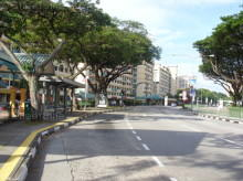 Toa Payoh Green photo thumbnail #7