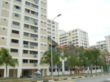 Pasir Ris Street 11 thumbnail photo