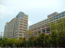 Pasir Ris Street 51 thumbnail photo