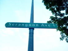 Serangoon Avenue 1 photo thumbnail #3