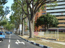 Tampines Street 11 photo thumbnail #4