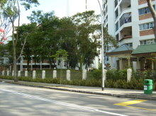 Tampines Street 11 photo thumbnail #6
