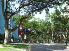 Telok Blangah Drive thumbnail photo