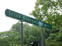 Telok Blangah Heights #78932